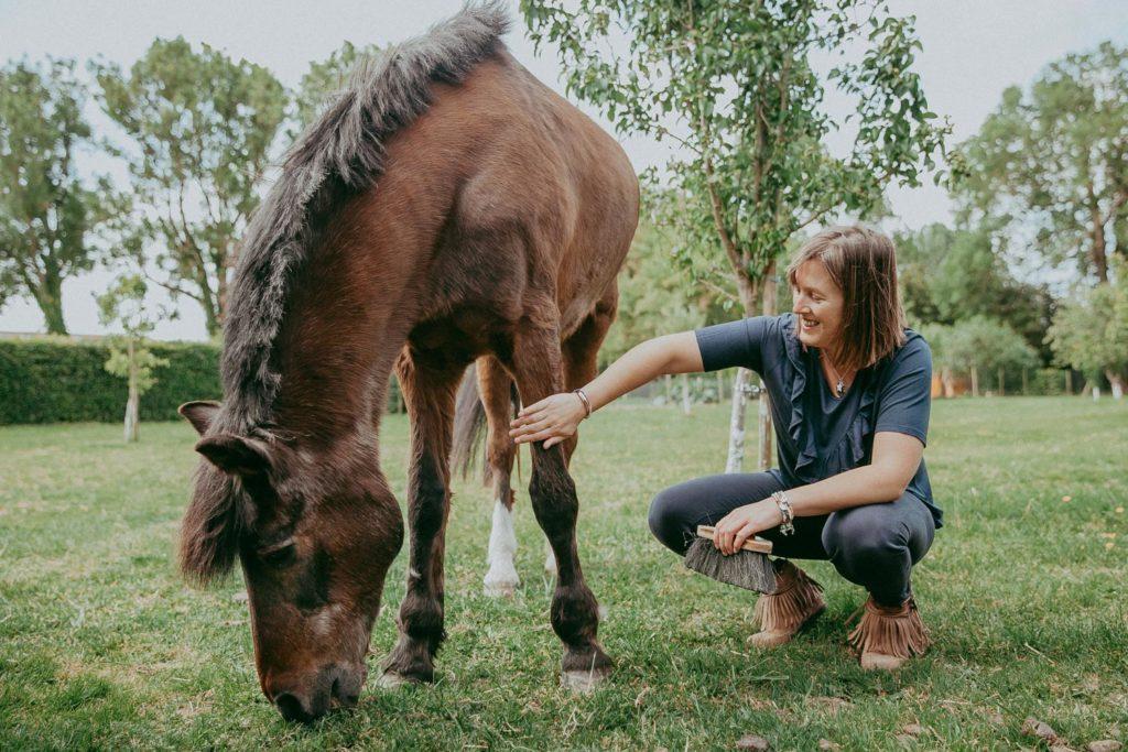 séance cheval saint Omer